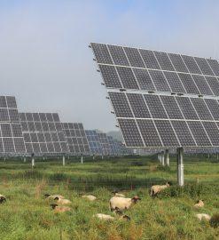 Inwestycja w energooszczędnym domu – panele fotowoltaiczne